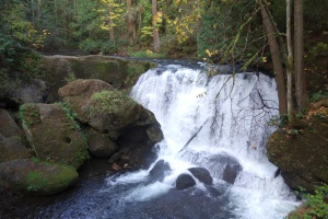 Bellingham, WA waterfall. This is the first big waterfall I can recall seeing. Another first for me on this trip.
