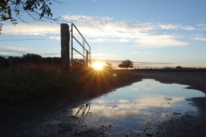 After the Nebraskan rainstorm that inspired my post 'Weathering the Storm.' The morning was much calmer, and the flat lands provided a great sunrise.